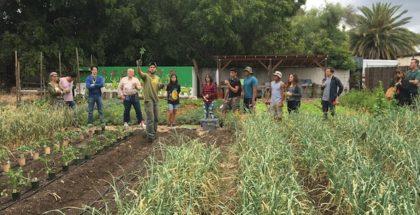 cottonwood urban farm san fernando valley los angeles-min