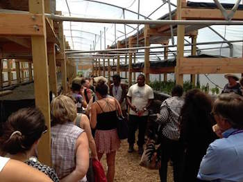 Dre Taylor (center) giving a tour of Nile Valley Aquaponics. (Photo courtesy of Males to Men)