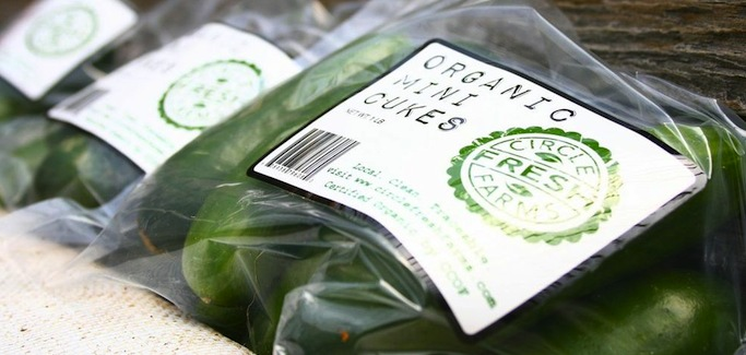 Circle Fresh Farms Ties Network of Hydroponic Farms Together to Grow Local Food Movement in Colorado