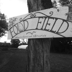Photo Credit: Food Field.