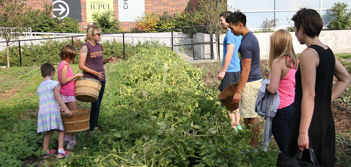 Indiana Urban Farm Takes Whole Lifestyle Approach to Local Food