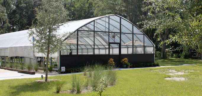 Avid Gardener's Aquaponics Hobby Evolves into Commercial and Educational Enterprise