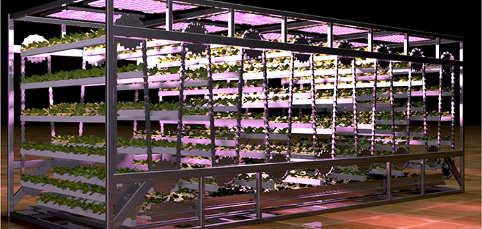 Canadian Hydroponic Startup Perfects Cubic Farming System