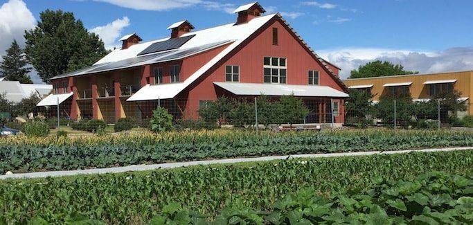 orchard gardens neighborhood farm and community garden; photo credit dave victor