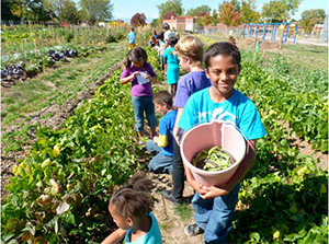 Courtesy of Colorado Farm to School Task Force.