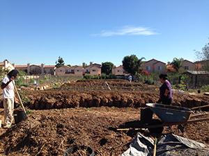 Ethan's Farm. Photo by Rose Egelhoff.