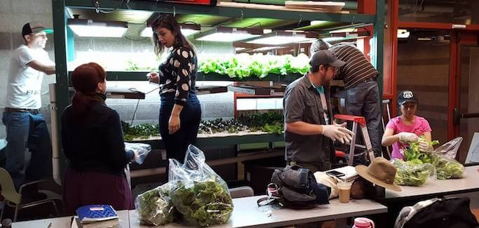 Community College in Southwest Embraces Aquaponics to Grow Farmers of the Future