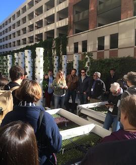 seedstock future of food field trip usc teaching garden
