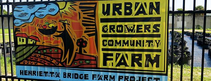 West Palm Beach's First Urban Farm Serves Local Food Deserts