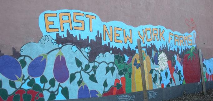 East Brooklyn's Burgeoning Backyard Farm Movement Promotes Food Access