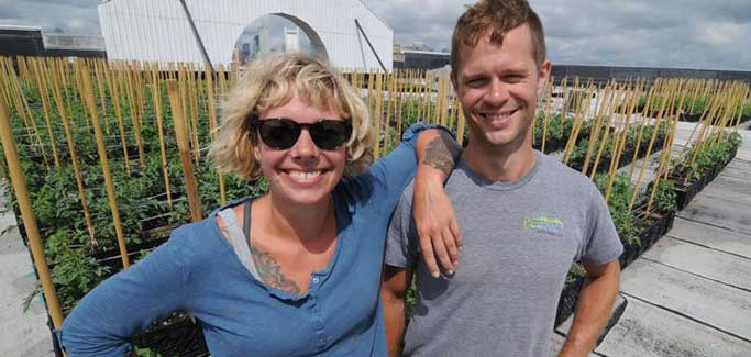 Getting to Higher Ground with Rooftop Farming