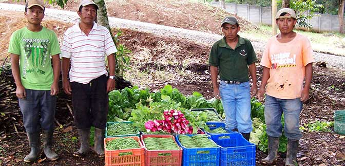 Seeds of Tomorrow Project Brings Fresh Produce and Ag Education to Remote Guatemalan Town