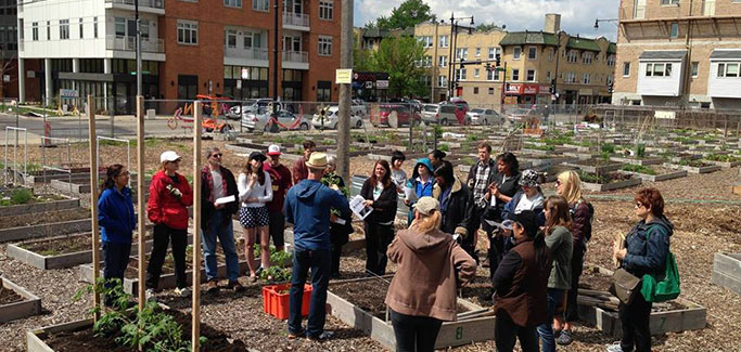 'Pop-Up Victory Gardens'  Honor History While Greening Blight in the Windy City