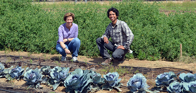 Q&A: Dr. Peggy A. Mauk of UC Riverside Discusses Efforts to Strengthen Local Food System