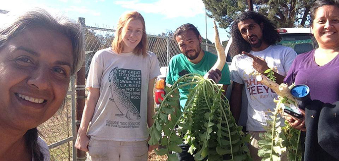 L.A.-area Startup Envisions Sustainable Farming in the Suburbs