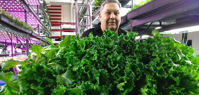 New Urban Farm Helps to Revitalize Detroit Neighborhood