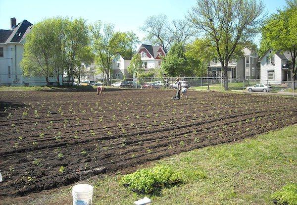 Farmers planting tomatoes on one of Stone's Throw Urban Farm's plots. Photo Credit: Stone's Throw Urban Farm.