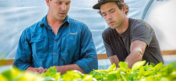 Fisheries Biologist and Mechanical Engineer Collaborate on Maine Aquaponics Farm