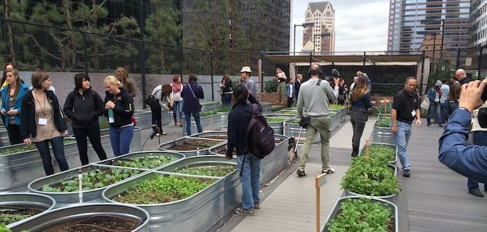 Seedstock 'Future of Food: Urban Ag Field Trip' to Explore Urban Farming Operations in L.A. County